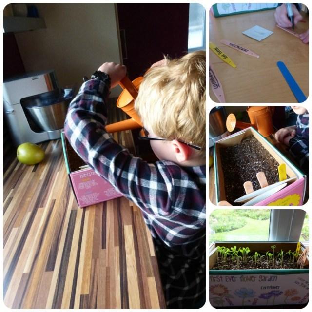 crafts 4 kids gardening