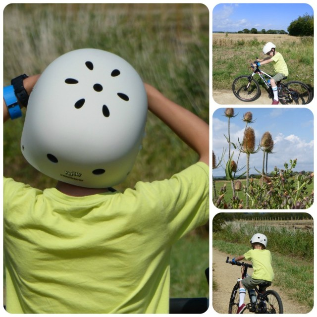 summer cycle ride