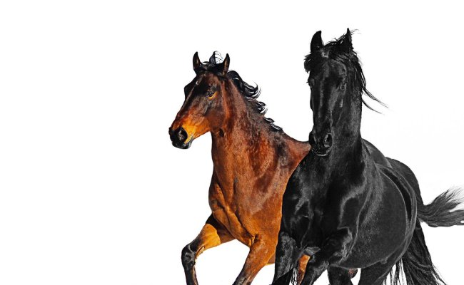 The Old Town Road Remix From Lil Nas X And Billy Ray