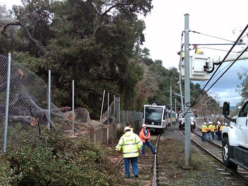 Tree damages overhead catenary wires and blocks Gold Line tracks between Highland Park and Mission stations near the Via Verde crossing and the Arroyo Seco Bridge. Photo: Luis Inzunza.