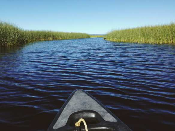 Upper Klamath National Wildlife Refuge as seen from a canoe. Photo by Steve Hymon.