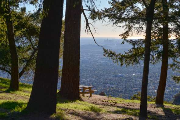 Just a small slice of our region's sprawl can be seen from Henninger Flats above Altadena. Photo by Steve Hymon.