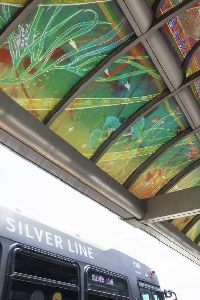 SilverLine515_425_sm