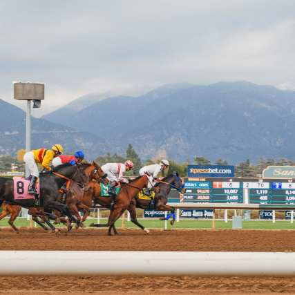 Horse racing at Santa Anita Park. Photos: Steve Hymon/Metro