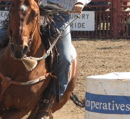 Winner Regional High School Rodeo