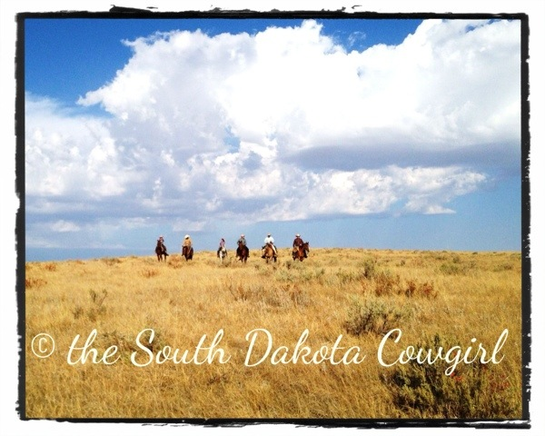 western lifestyle, horse photography, equine photographer, south dakota equine photographer, south dakota photography
