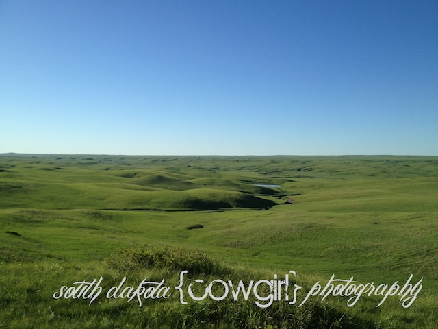 the south dakota cowgirl, south dakota cowgirl photography