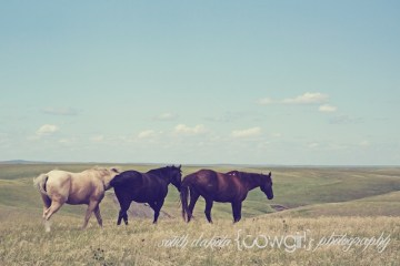south dakota photographers, south dakota photography, south dakota cowgirl photography, south dakota ranches, south dakota landscape