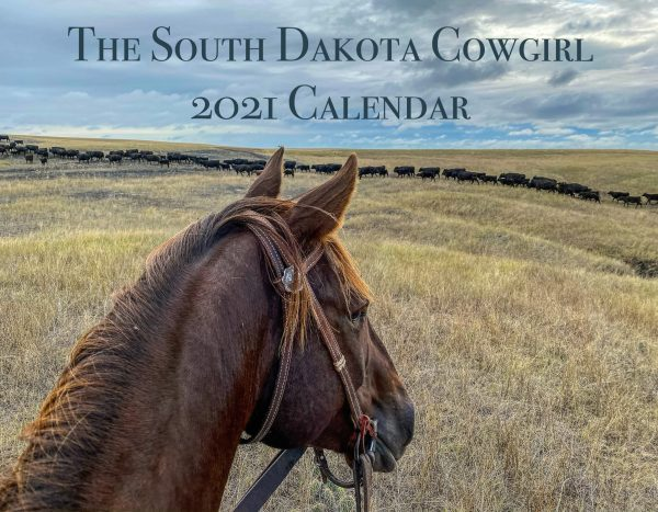 2021 calendar, the view from here