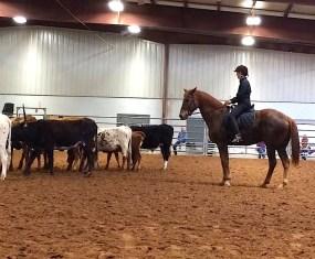 Lynn Reardon from Lope Texas on Buck Brannaman