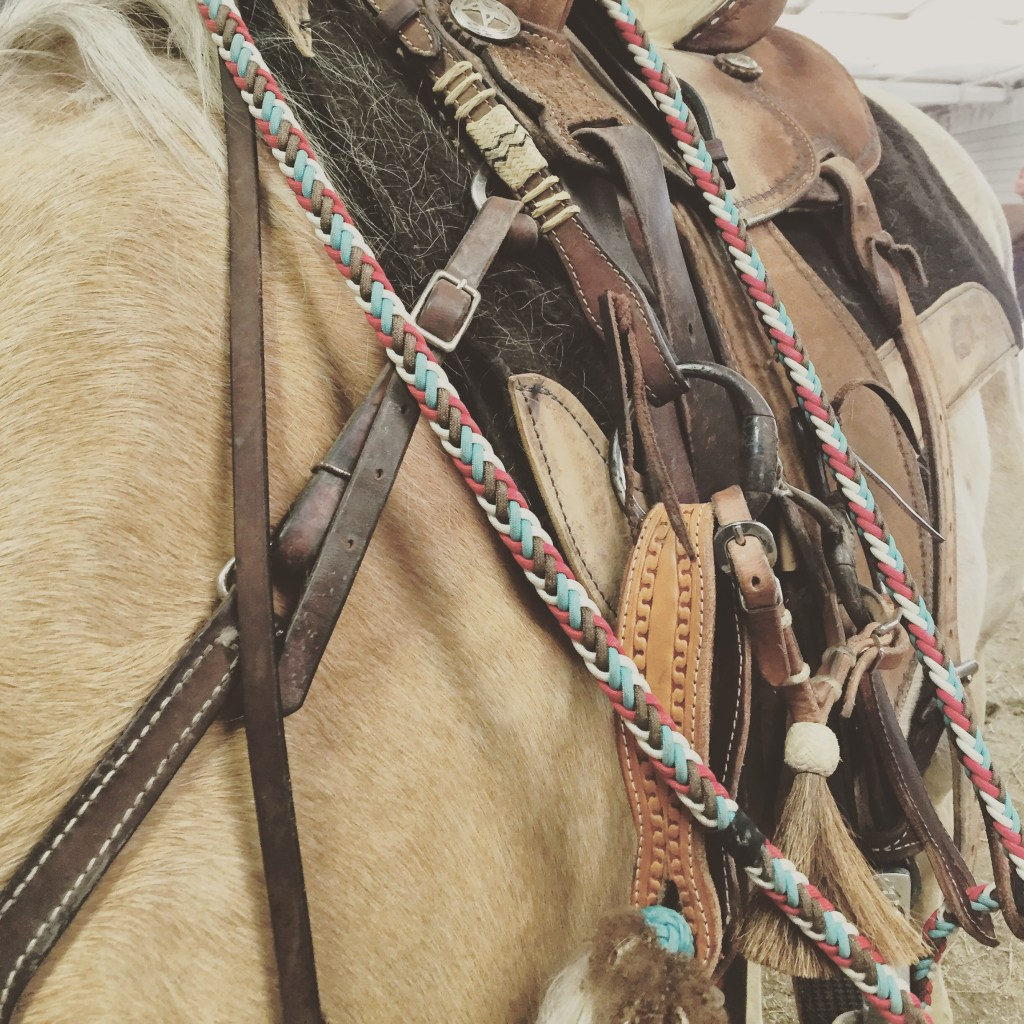 get your horse ready to bridle