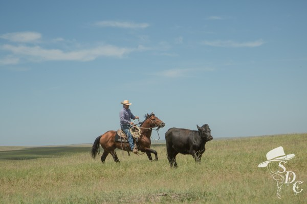 Roping out of the Rodear.