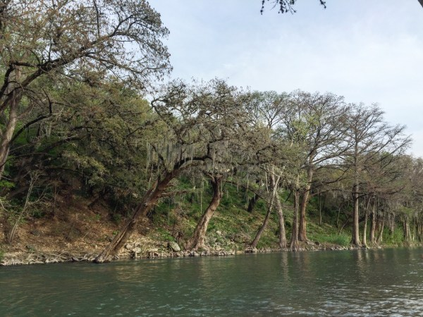 The Guadalupe