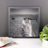 """""""Looking for Mama"""" Framed Photo Paper Poster"""