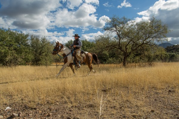 Circle Z Guest Ranch, Loping Rides