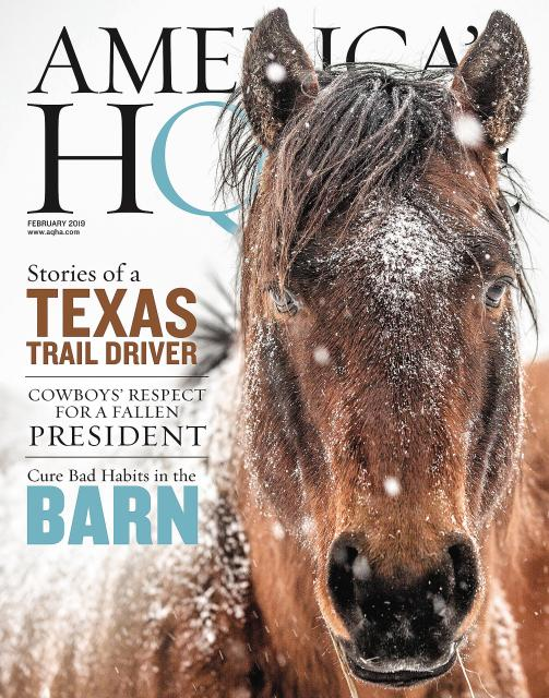 America's Horse, Cover, February 2019, South Dakota Cowgirl Photography