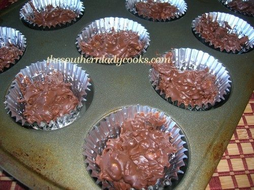 Chocolate Butterscotch Nutty Clusters - TSLC2