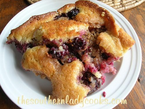 Blackberry Buckle - TSLC