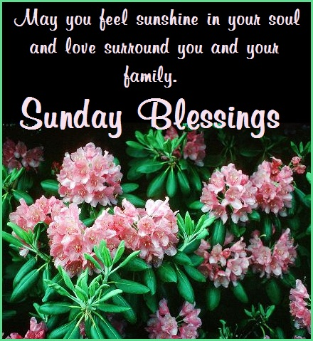 Sunday Blessings 3