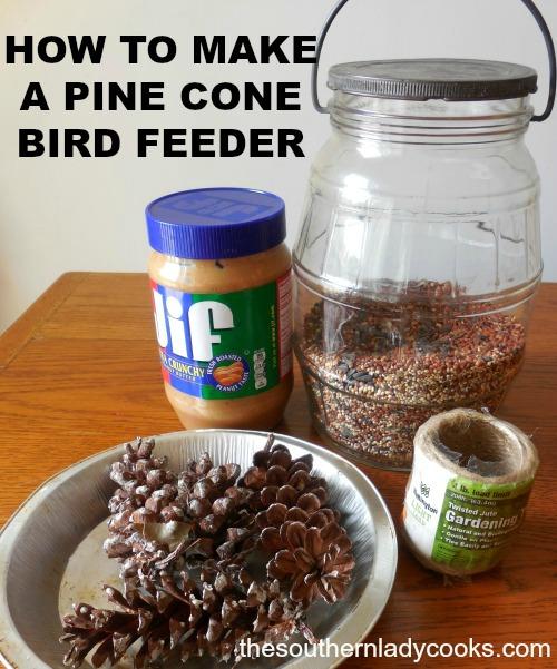 How to make a pine cone bird feeder
