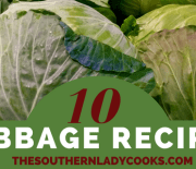 10 CABBAGE RECIPES