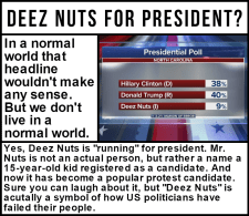 Deez Nuts for president?