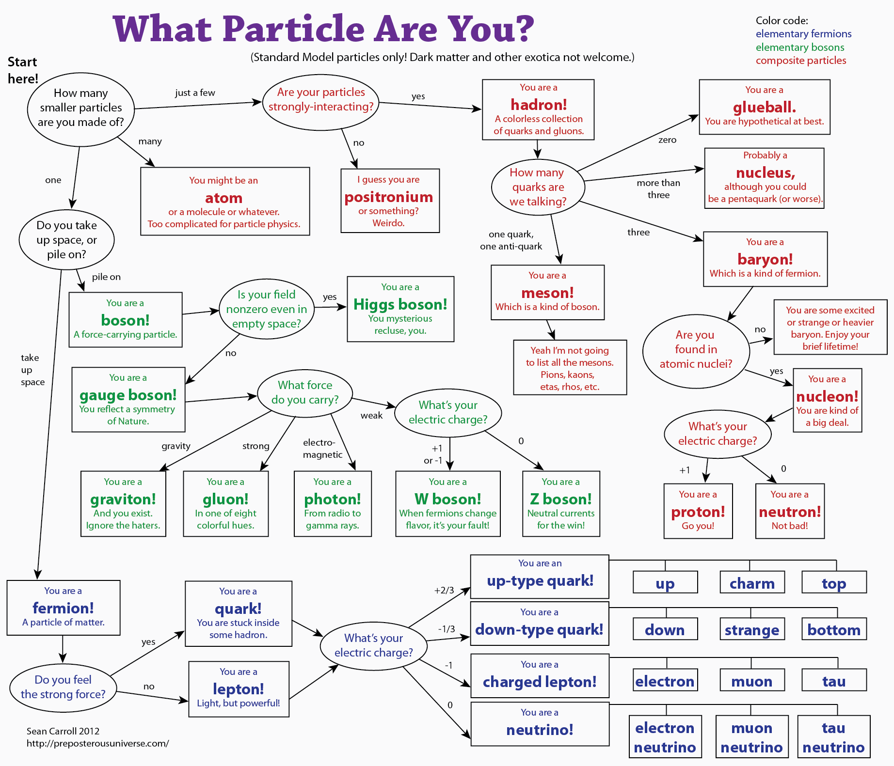 Whatparticle3