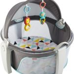 Fisher-Price On-The-Go Baby Dome $32.29 (Regular $69.99)