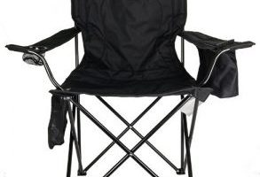 Coleman Cooler Quad Portable Camping Chair $12.00 Shipped!