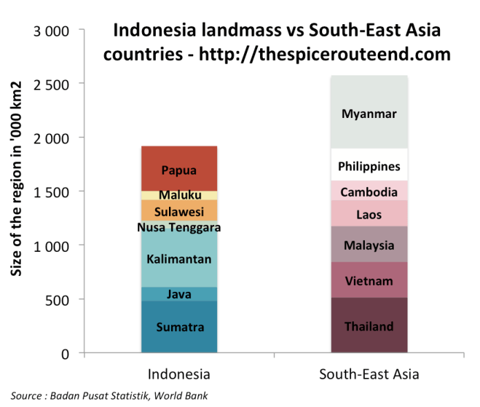 Indonesia Age Demographics