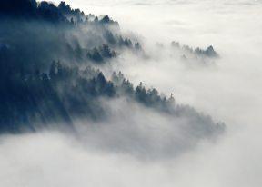 cloudy-fog-foggy-45222.jpg
