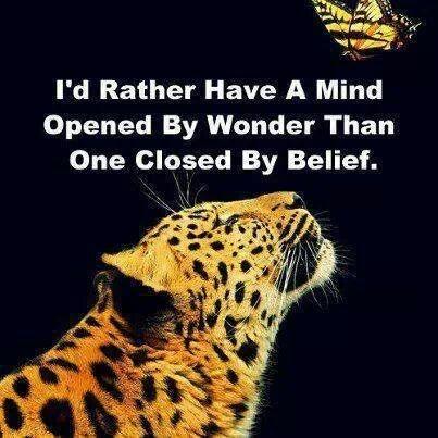 Mente abierta por maravillas