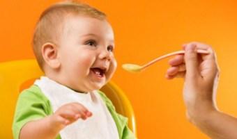 Top 7 Best Baby Food Brands in India