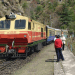 The Toy Train At Shimla