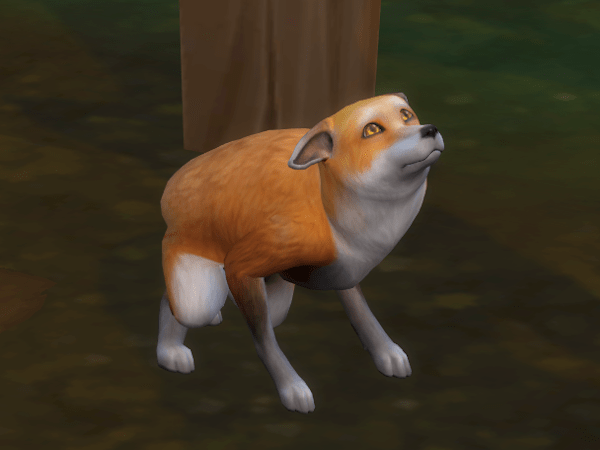 Sims 4 Country Living wild fox