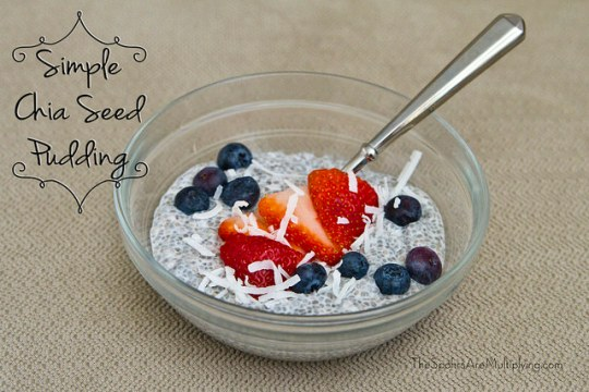 simple chia seed pudding