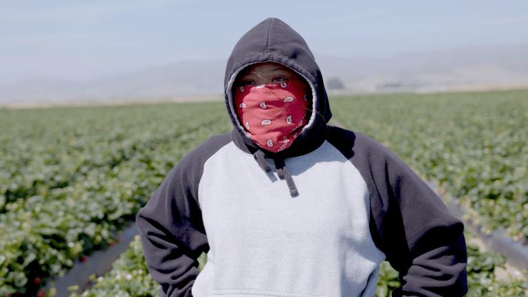 Fruits of Labor (SXSW)
