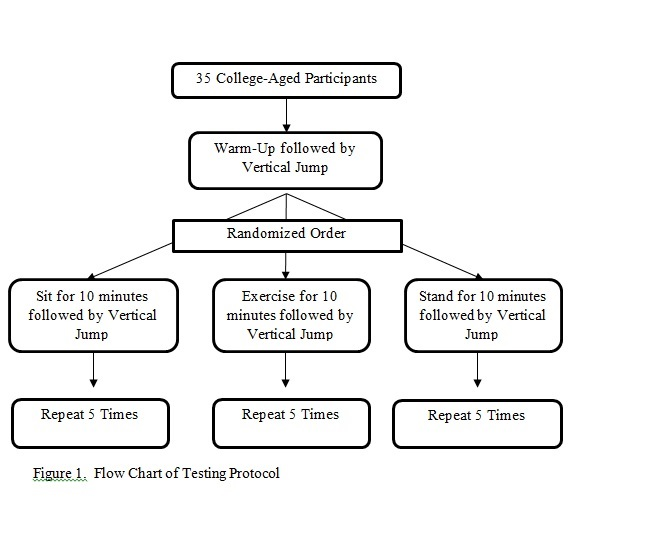 Figure 1 - Flow Chart