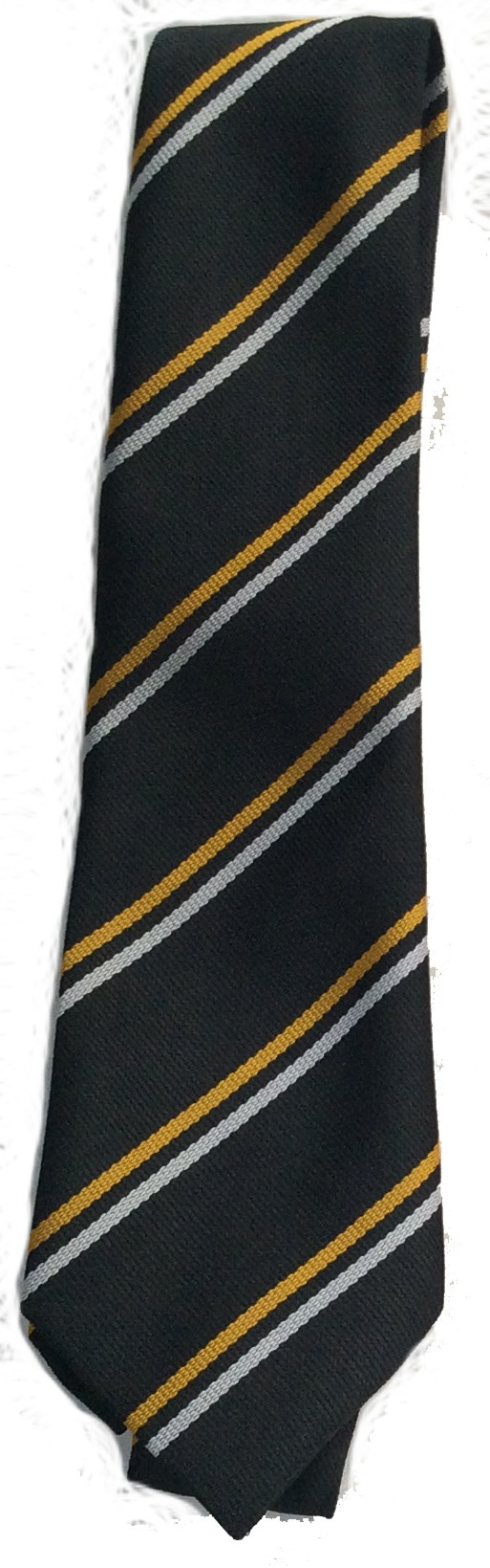 Christ the Redeemer School Tie