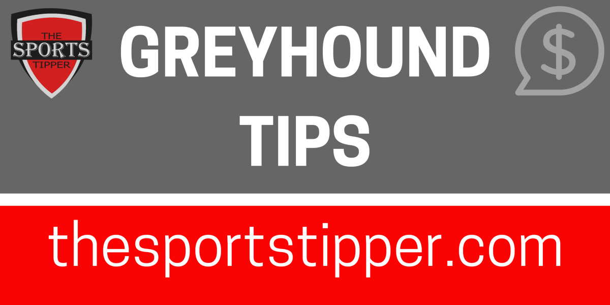 Free Greyhound Racing Tips 2307