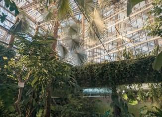 Botanical Gardens, Ghent © Mirna Pavlovic