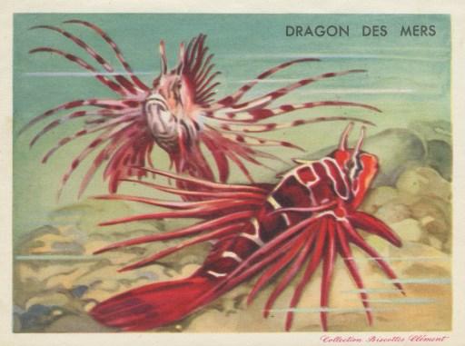 Dragondesmers