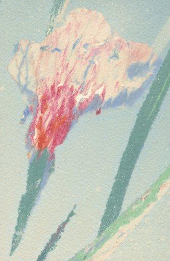 Reday,Wildflowers(detail)