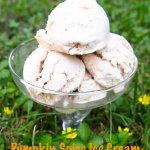 Pumpkin Spice Ice cream {2 Ingredients}