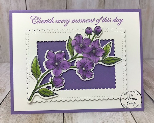 I paired the Stitched So Sweetly Dies with my featured stamp set for March 2020 the Forever Blossoms Bundle. Details are on my blog here: https://wp.me/p59VWq-aPw . #stampinup #stitchedsosweetly #foreverblossoms #thestampcamp