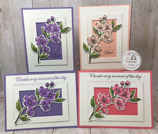 These were created during my facebook and youtube live event. If you would like the details you will find them on my blog here: https://wp.me/p59VWq-aPN #stampinup #thestampcamp #foreverblossoms