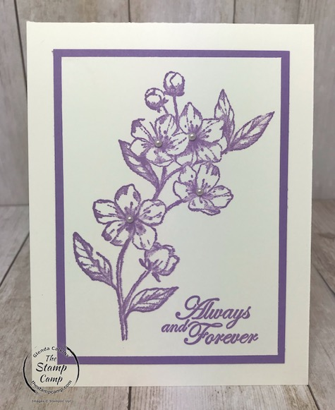 My featured stamp set this month is the Forever Blossoms bundle. These are the 5 In Colors for 2019-2021. Details can be found on my blog here: https://wp.me/p59VWq-aQm #stampinup #thestampcamp #incolors #foreverblossoms #simplestamping