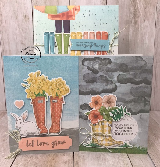 The March Paper Pumpkin Kit is the perfect kit to put together while being quarantined to the indoors. Details on my blog: https://wp.me/p59VWq-aRm . #paperpumpkin #stampinup #thestampcamp #cardkits