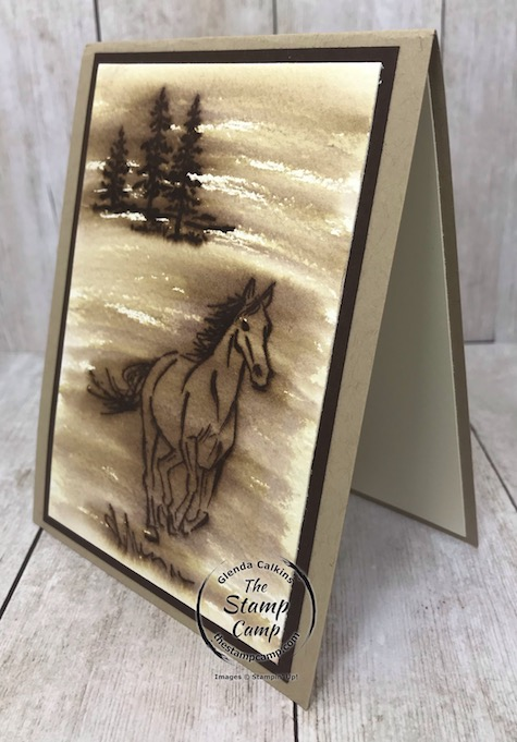 Tuesdays Tips and Techniques is the Faux Wood Burning technique using the Let's Ride stamp set. This set is on the retired list so you will need to order it before June 3rd. Details are on my blog here: https://wp.me/p59VWq-bdZ. #stampinup #thestampcamp #horsestamp #letsride #technique
