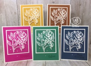 Prized Peony In Color Cards for Club Members
